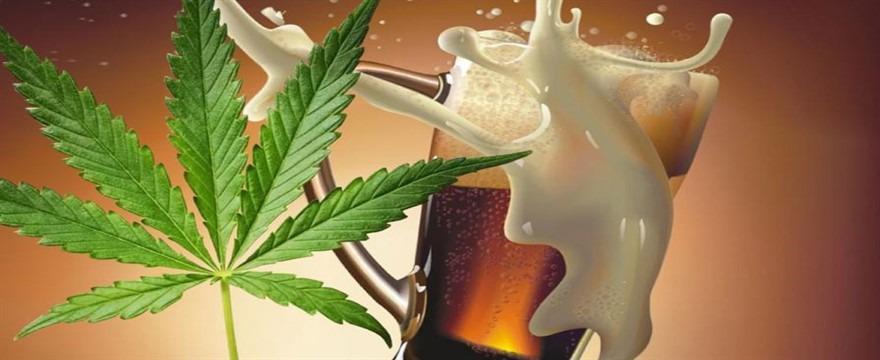 Cannabis e Alcol – Il nostro confronto