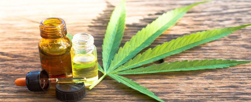 Olio al CBD | Benefici e utilizzo del cannabinoide