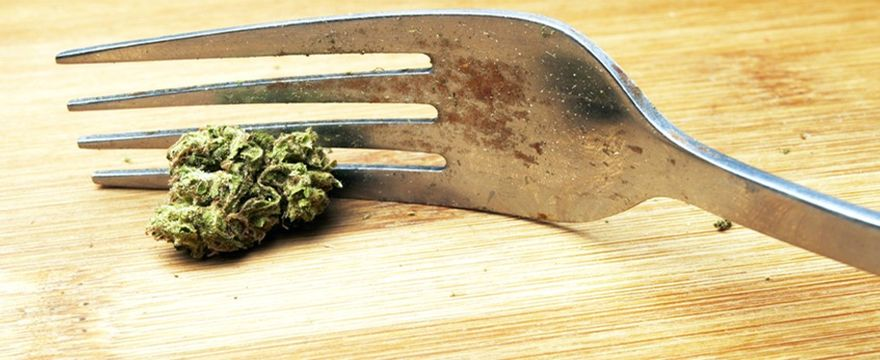 cannabis in cucina ricette marijuana cannabis