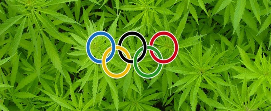 cannabis e sport cbd